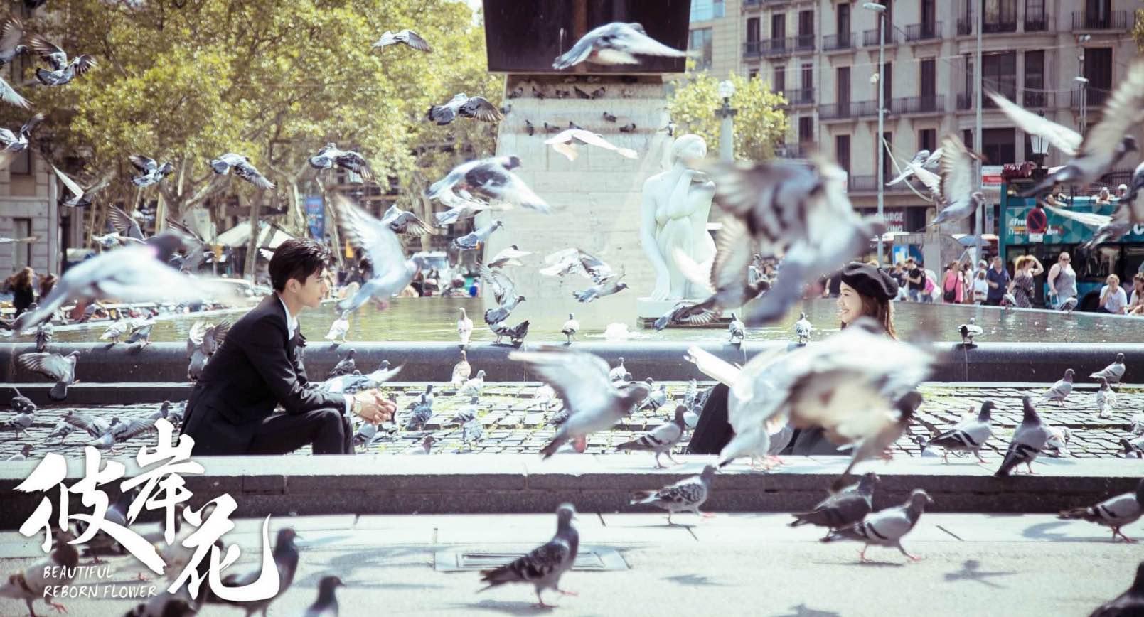 《彼岸花》群像演绎都市爱情  热度口碑双在线