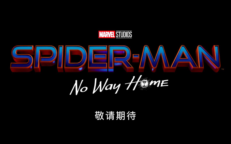 """荷兰弟曝光《蜘蛛侠3》英文版片名 称是""""史上最有野心""""超英片"""